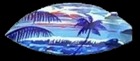 sunset hand painted on surfboard hair barrettes